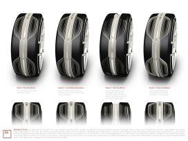 Michelin E.A.P. Tire System