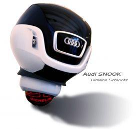 Audi Snook